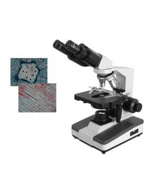 双目生物显微镜DYS-106