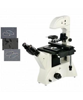 研究级倒置生物显微镜DYS-809